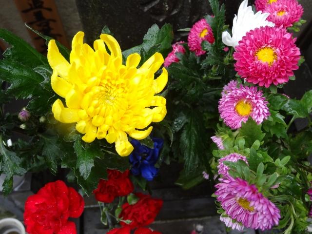 お盆に供える花の種類には決まりがあるの?生花以外はダメなの?