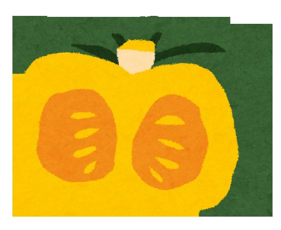 かぼちゃは栄養たっぷり!妊婦さんにもおすすめ!