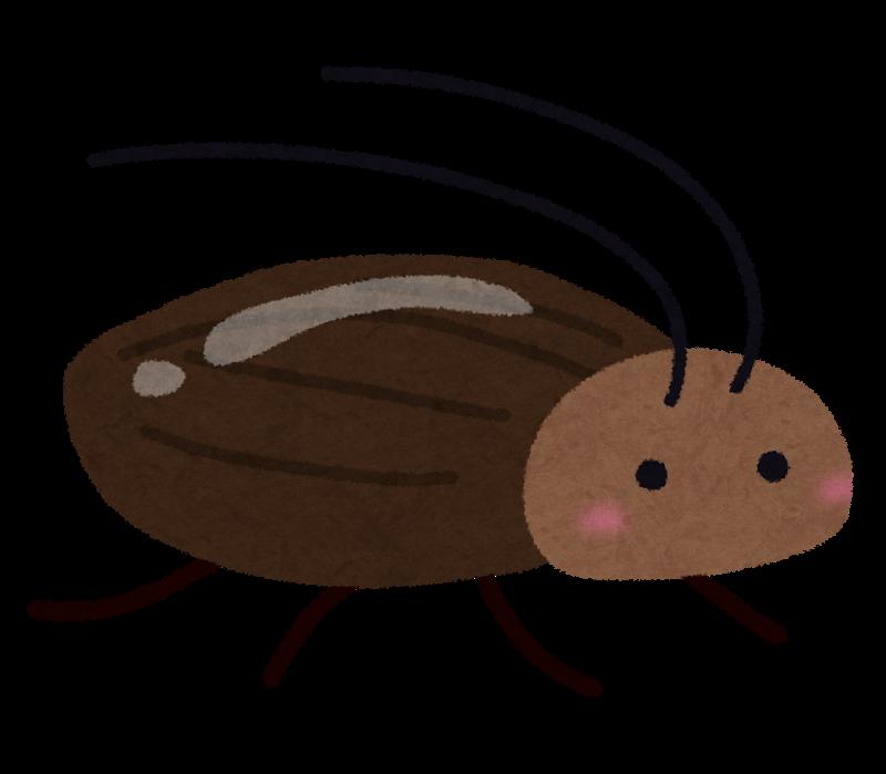 ゴキブリが飛ぶ理由と対処法!気温も関係あるの?